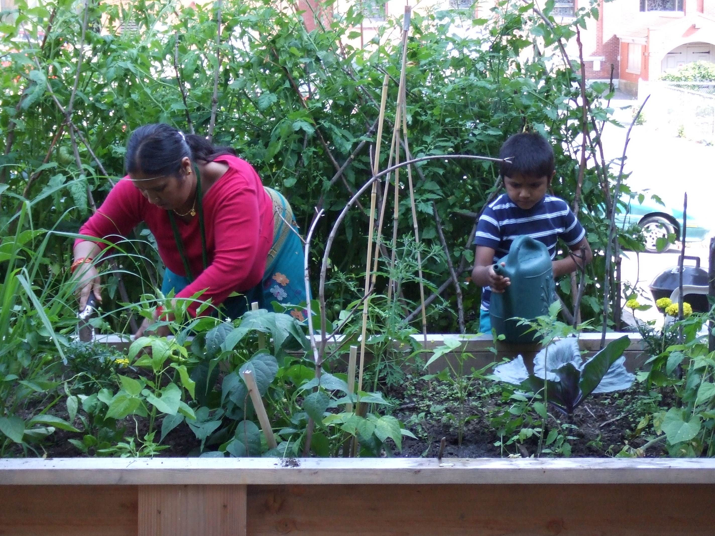 Tapestry Garden - Families care for plants